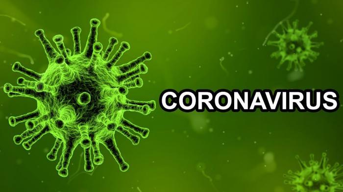 По данным Жуковской ГКБ на понедельник 01 февраля, диагноз «коронавирусная инфекция» подтверждён у 1338 пациентов. Все они переносят заболевание дома в лёгкой форме.
