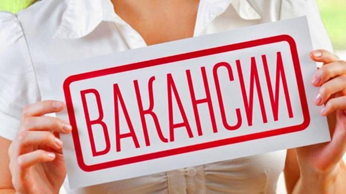 В отдел кадров Жуковской ГКБ требуется специалист по кадрам.