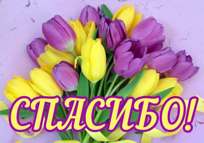 Уважаемая Лилия Алиевна! Выражаю огромную благодарность врачам и медсестрам ковид-отделения  городской клинической больницы.
