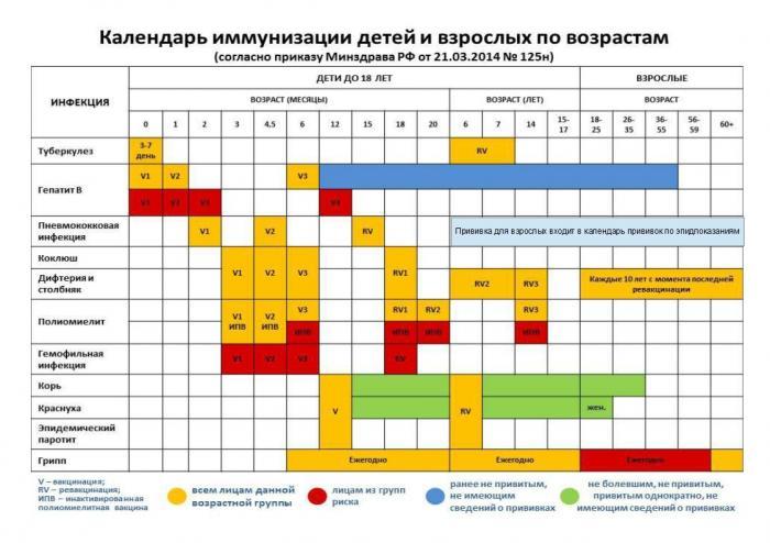 В городской поликлинике Жуковской ГКБ проводится профилактическая вакцинация взрослого населения