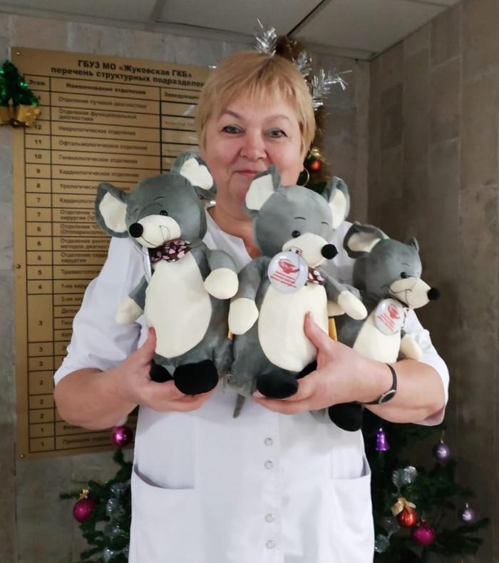 Вот такие забавные игрушки - символы наступающего Нового года (разумеется, с конфетами внутри!) дарит профсоюзная организация Жуковской ГКБ детям и внукам наших сотрудников.