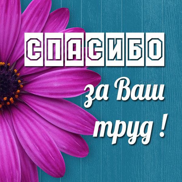 Добрый День, хочу поблагодарить эндокринолога, Половых Алину Николаевну,
